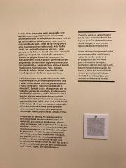 Modernist_ Di Cavalcanti Exhibition_ Pina- 2018