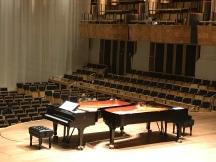 Piano Brasileiro_Natureza dos SONS
